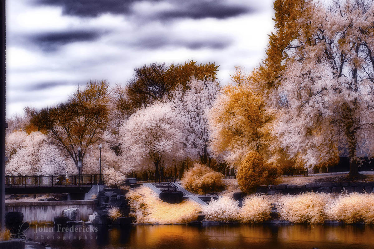 z-parc-lafontaine-infrared.jpg